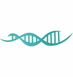 Dna strand teal vector