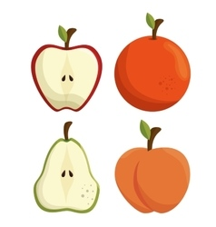 fresh apple and orange sliced vector image