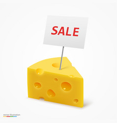 Triangular piece of cheese sale frame vector