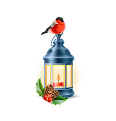 vintage lamp bullfinch holly pine cone vector image