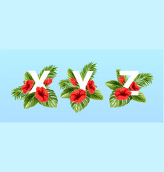 x v z letters surrounded summer tropical leaves vector image