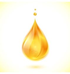 Realistic oil or honey drop vector image