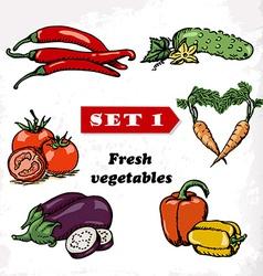 Set 1 Fresh vegetables of tomato eggplant pepper vector image vector image