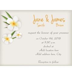 wedding plumeria background vector image