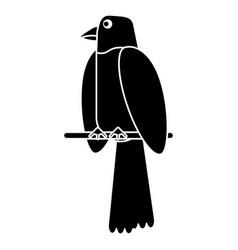 parrot bird animal pictogram vector image