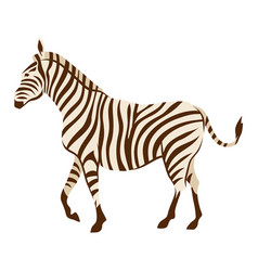 stylized of zebra vector image