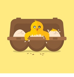 Single New Born Chick Hit The Egg vector image