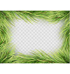 christmas tree fir branch frame eps 10 vector image