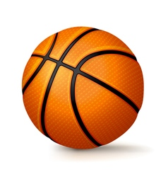 Basketball Isolated on White vector image