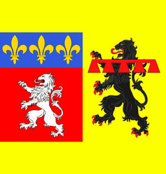 Flag of rhone is a department in central eastern vector