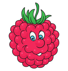 fresh raspberry cartoon vector image