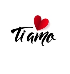 I Love You Valentines Day Italian Black and Red vector image vector image