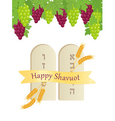 Shavuot tablets of stone grape clusters vector