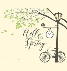 spring landscape with bike tree and lamppost vector image