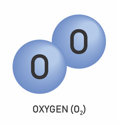 The molecular formula oxygen vector