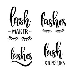 lashes lettering beauty salon lash maker vector image