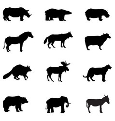 animal silhouettes on white background vector image
