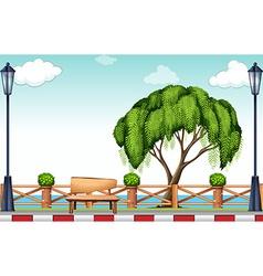 Big tree at the park vector image