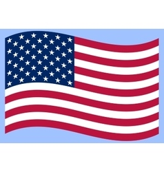 National political official US flag on a white vector