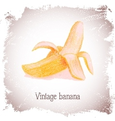 Vintage card with banana vector image