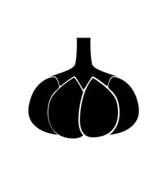 garlic black color icon vector image