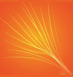 orange bright background vector image