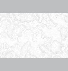 Abstract blank topographic contour map vector