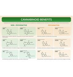 Cannabinoid benefits horizontal textbook vector