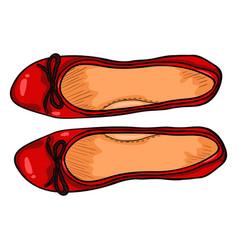 Cartoon - pair women ballet flats top view vector