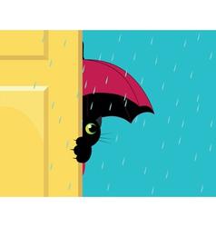 cat under an umbrella vector image
