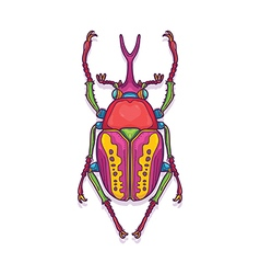 Colorful Scarab Beetle Bug Insect vector