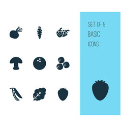 Food icons set with brussels sprouts strawberry vector
