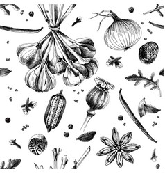 hand drawn seamless pattern with spices vector image