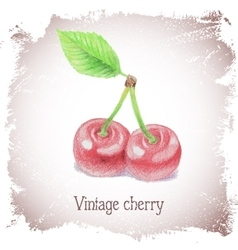 Vintage card with cherry vector
