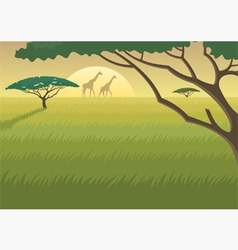 africa landscape vector image vector image