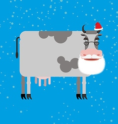 Cow Santa Claus Farm animal with beard and vector image vector image