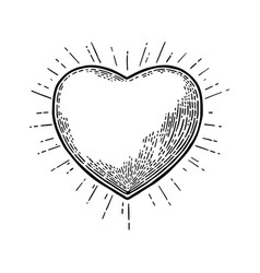 heart with rays black vintage engraving vector image vector image
