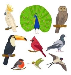 Bird drawn icon set vector