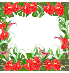 Floral border background with blooming vector