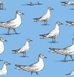 Pattern walking seagulls vector