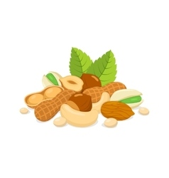 Sorts of nuts composition vector