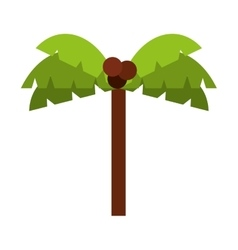 tree palm isolated icon design vector image