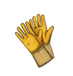 Yellow garden rubber gloves vector