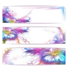 rainbow frame with flower on white vector image