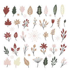 set autumn leaves and brunshes vector image