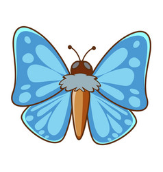 Butterfly with blue wings on white background vector