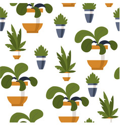 decorative plant in pot flower for home office vector image