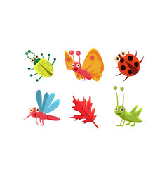 flat set cute insects and red leaf vector image