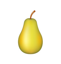 fruit realistic ripe pear vector image