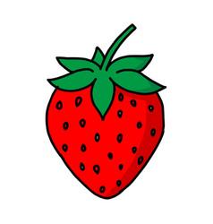 garden strawberry fruit or strawberries modern vector image